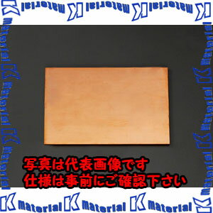 【代引不可】ESCO(エスコ) 300x300x10.0mm 銅板 EA441VA-102
