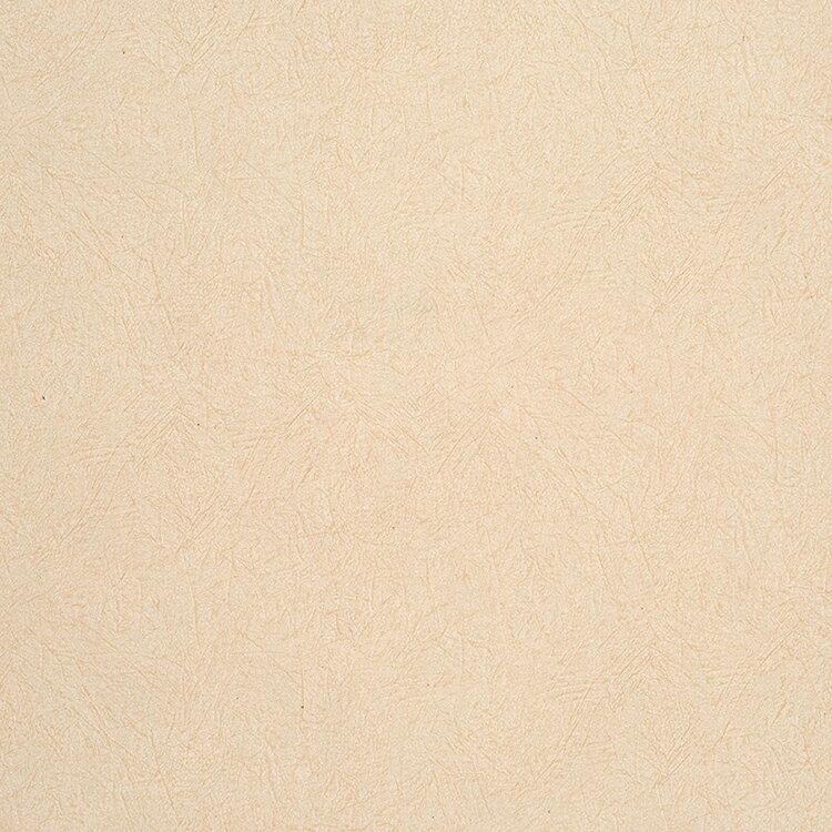 【国内 送料無料】 フランス製(ヨーロッパ) のりなし 輸入壁紙 Caselio(カセリオ) 【カタログ ETNA】 塩化ビニル樹脂系壁紙 クロス ETN63641012 [購入単位 1ロール(53cm×10m)] 【お取り寄せ品】