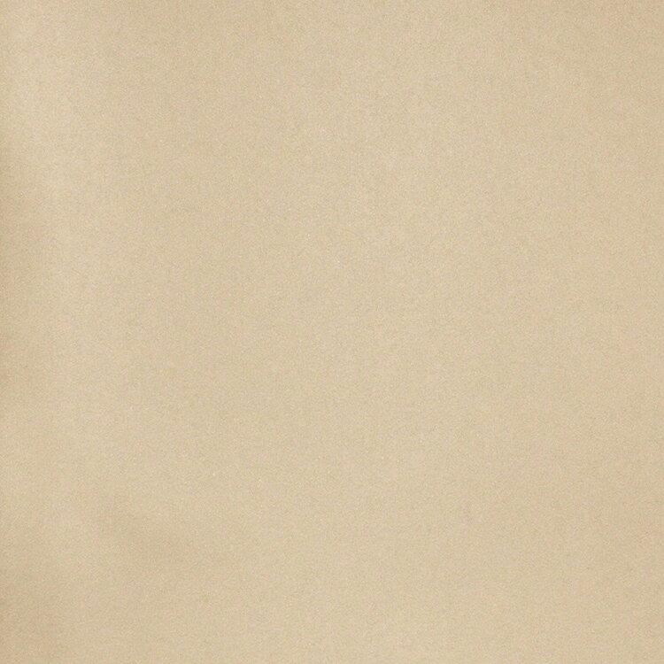 【国内 送料無料】 オランダ製(ヨーロッパ) のりなし 輸入壁紙 D.DEPT (ザ デザイン デパートメント) /Origin(オリジン) 【カタログ GRANDEUR】 フリース(不織布)壁紙 クロス 346608 [購入単位 1ロール(53cm×10m)] 【お取り寄せ品】