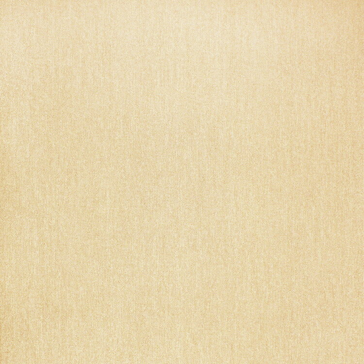 【国内 送料無料】 オランダ製(ヨーロッパ) のりなし 輸入壁紙 D.DEPT (ザ デザイン デパートメント) /Origin(オリジン) 【カタログ GRANDEUR】 フリース(不織布)壁紙 クロス 346623 [購入単位 1ロール(53cm×10m)] 【お取り寄せ品】