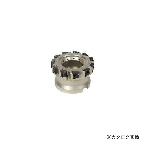 イスカル X その他ミーリング/カッタ F90LN D125-15-38.10-R-N15