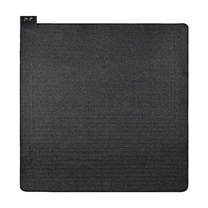 電磁波カット ホットカーペット 2畳 広電 CWU206D