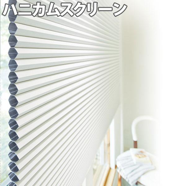 ニチベイ ハニカムスクリーン レフィーナ オストル(遮光1級)(防炎) シングルスタイル ループコード式 幅201~240cm×丈261~300cm