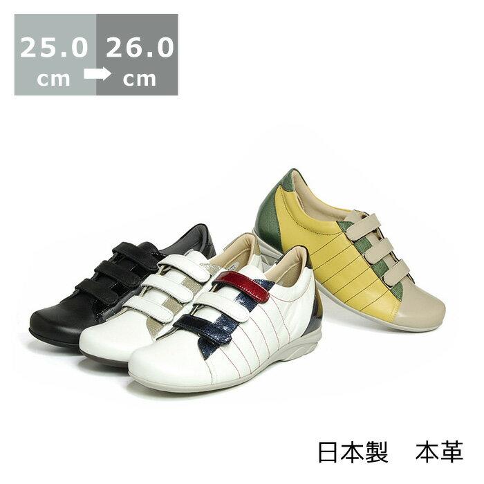 【送料無料】ベルクロオブリークスニーカー大きいサイズ 25.0cm 25.5cm 26.0cm センチ ヒール3cm モデルサイズ レディース靴 黒 ブラック