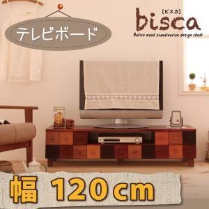 ローボード(テレビ台/テレビボード) 幅120cm 天然木北欧デザインテレビボード【Bisca】ビスカ【代引不可】