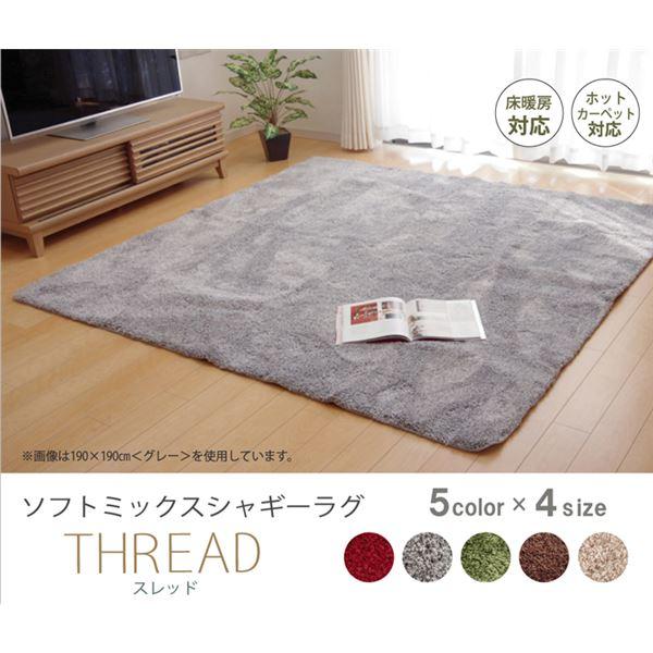 選べる5色 シャギー 洗えるラグ 長方形 『スレッド』 グリーン 190×240cm