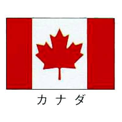 旗 世界の国旗 カナダ 90×135 【 キャンセル/返品不可 】 【 業務用 】   メイチョー