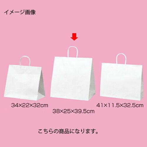 丸ひもタイプ 白無地 38×25×39.5 200枚【店舗備品 包装紙 ラッピング 袋 ディスプレー店舗】