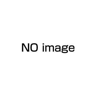 【 業務用 】万能スライサー 電動マルチー用オプション ダイス円盤 10×10mm