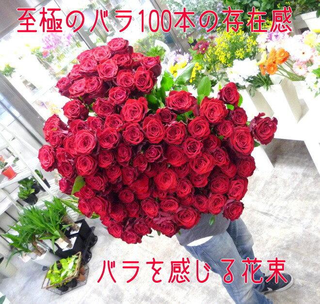 【送料無料(一部地域を除く)】至極の赤いバラ(薔薇)100本の花束。特別なバラを揃えた、至極の花束。上質な赤バラを贅沢に束ねています。特別なプレゼントや、プロポーズなどにお贈りくださいませ。