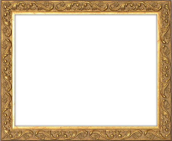 デッサン額縁 8201/アンティークゴールド B1サイズ(1030×728mm)☆前面アクリル仕様☆