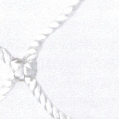 安全ネット 転落防止用 落下防止用 網 目合:50mm|36)幅(cm):600×長さ(cm):500|色:白