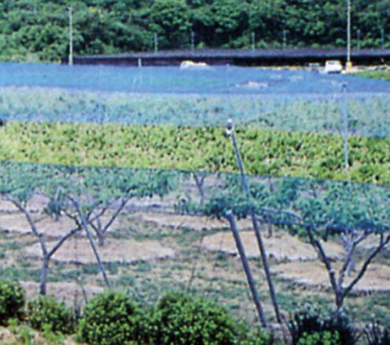 防鳥網 1000D 2cm目×幅18m×長さ27m(ブルー)