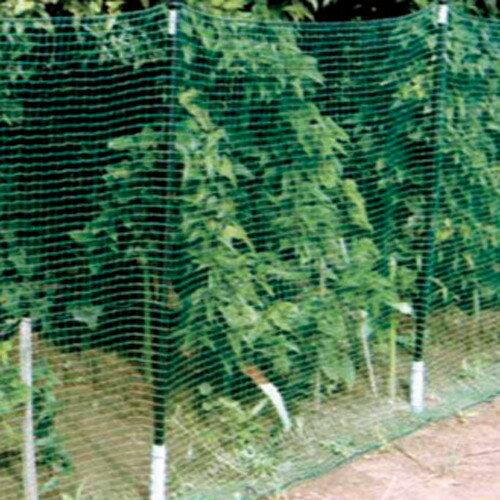 アニマルネット緑  16mm目×長さ50m×幅2m  4本セット