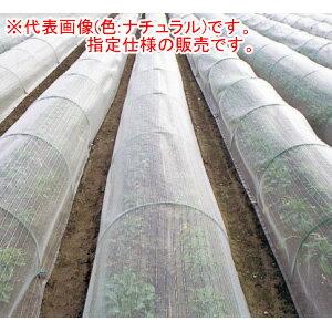 【法人のみ】防虫ネット(防虫網) サンサンネット EX2000 3.6x100m 目合1mm 遮光率90% ナチュラル