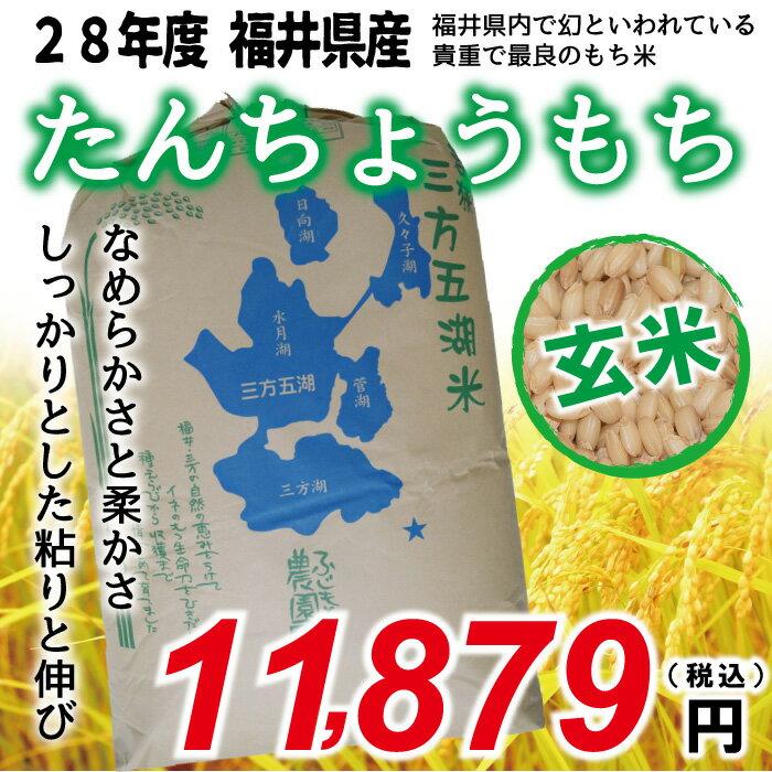 【福井県産 もち米 玄米】新米 28年度 たんちょうもち 30kg