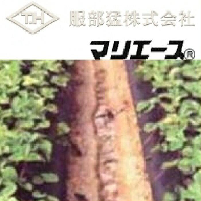 農業用不織布 マリエース E01025 (白) 幅180cm×長さ100m