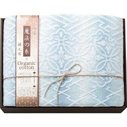 極選魔法の糸×オーガニック プレミアム綿毛布 ブルー MOW-11119BL C7139525C7139525(割引サービス不可、寄せ品キャンセル返品不可、突然終了欠品あり)