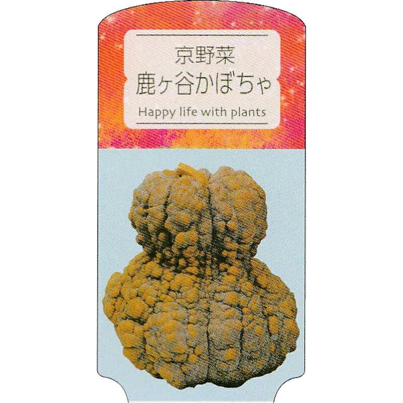 【ラベル のみ】【1000枚】 AC 3型 京野菜鹿ヶ谷かぼちゃ KABOCHA-003 ポリポット用 名札 アンドウケミカル カ施 【代引不可】