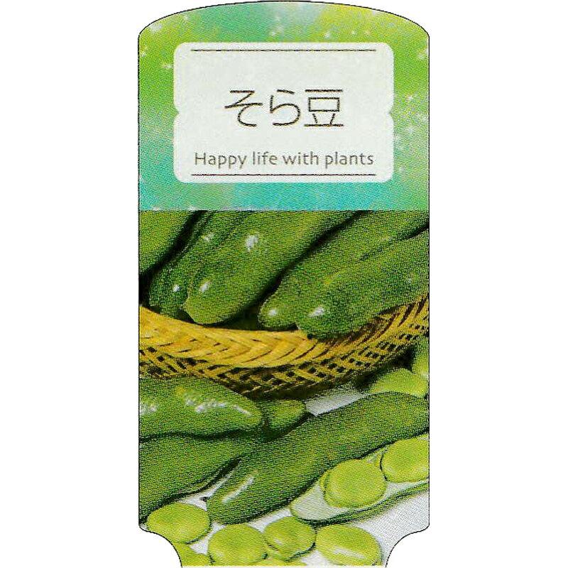 【ラベル のみ】【1000枚】 AC 3型 そら豆 SORAMAM-001 ポリポット用 名札 アンドウケミカル カ施 【代引不可】