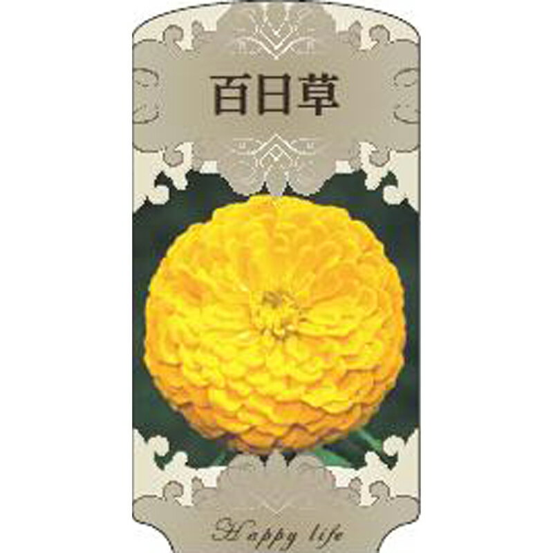 【ラベル のみ】【1000枚】 AC 3型 百日草 JINIA-014 ポリポット用 名札 アンドウケミカル カ施 【代引不可】