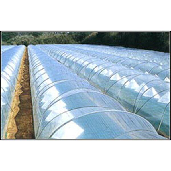 【大型配送】農ビ トンネルエース 長さ100m×厚さ0.05mm×幅230cm トンネル 専用 三菱樹脂アグリドリーム タ種D