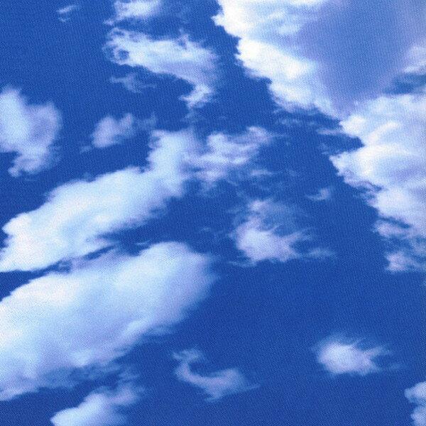 POP BAG SOFA SKY 生活雑貨(代引不可)【ポイント10倍】【送料無料】【smtb-f】