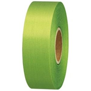 (業務用10セット) ジョインテックス カラーリボン黄緑 24mm*25m10個 B824J-YG10 ×10セット