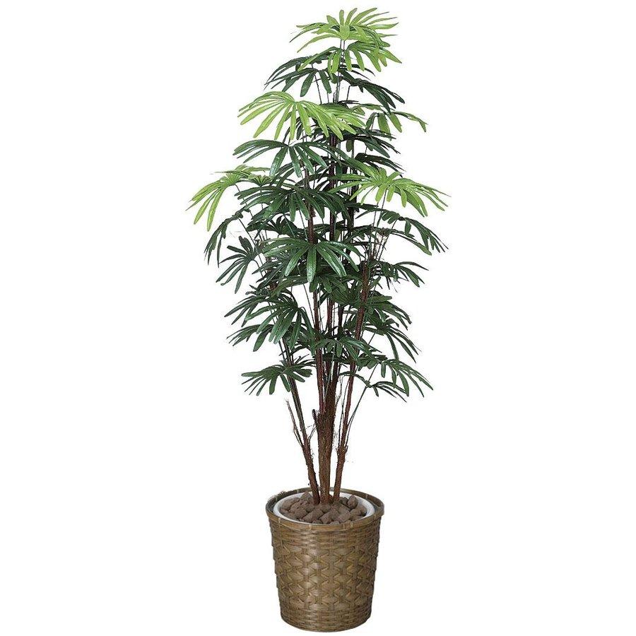 高い評判を得ている アートフラワー 人工観葉植物 光触媒 光の楽園 シュロチク1.6 鉢変更(代引き不可)【送料無料】