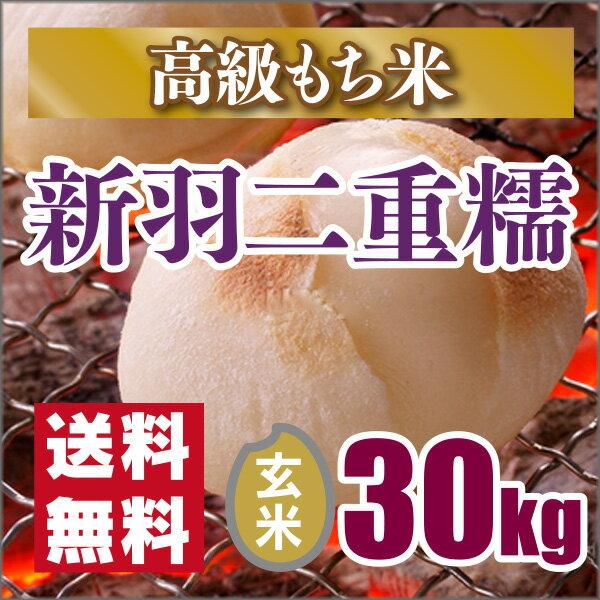 29年産新米【もち米】京都丹後産 新羽二重糯 玄米30kg