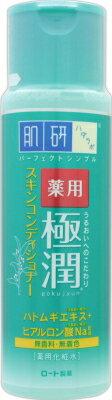 ロート製薬 肌研 薬用極潤スキンコンディショナー 170ml 170ml×48個   【送料無料】