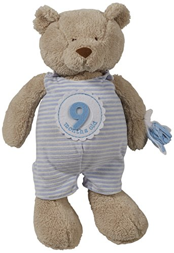【Mud Pie Milestone Plush Bear Nursery D?cor  Blue by Mud Pie】     b01dcupv0s