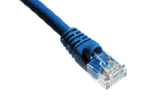 【送料無料】【Axiom - Patch cable - RJ-45 (M) to RJ-45 (M) - 5 ft - UTP - CAT 6 - molded  stranded  snagless  booted - blue】     b00xsls79e