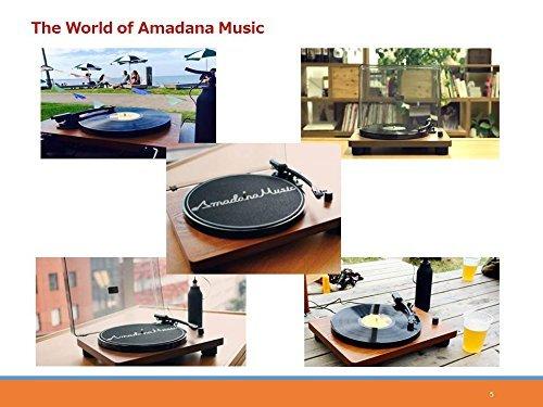 【送料無料】【Amadana Music UIZZ-18520 レコードプレーヤー SIBRECO】     b017ciszx6