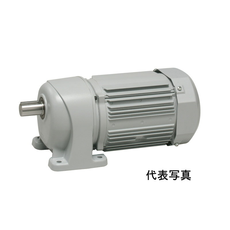 G3L50S300-WP08TWNEV2 ニッセイ 平行軸 防水タイプ 三相 脚取付 ブレーキ付き AC400V 0.75kW