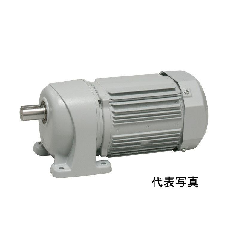 G3K28N5-MP08TWNTN ニッセイ 平行軸 標準タイプ 三相 小フランジ取付 ブレーキ無し AC400V 0.75kW