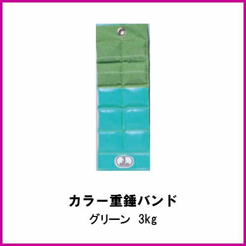 酒井医療 カラー重錘バンド グリーン 3kg