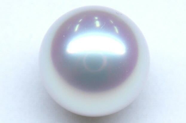 《真珠大卸からの直販》■生珠にして最上のテリを誇る究極のルース■特選真珠認定 白蝶真珠ルース16.2mm[プレミアムカラー]【送料無料】
