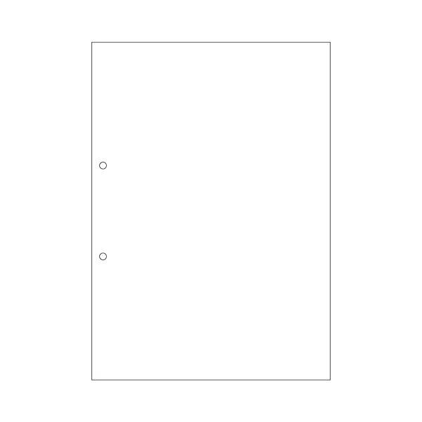 AV・デジモノ (まとめ) ヒサゴ マルチプリンター帳票(エコノミープライス) A4 白紙 2穴 BPE2001 1箱(2500枚) 【×4セット】