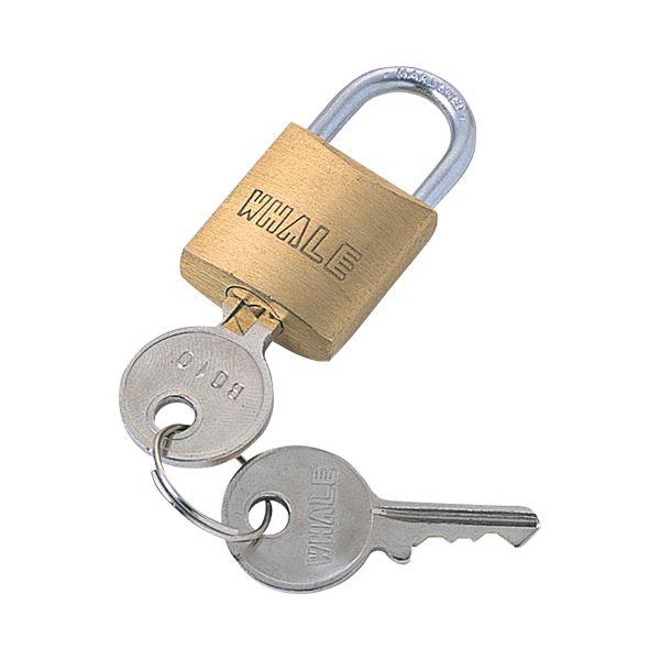 (まとめ) サンワサプライ eセキュリティ 南京錠小 鍵No.1 SLE-2L-1 1個 【×10セット】