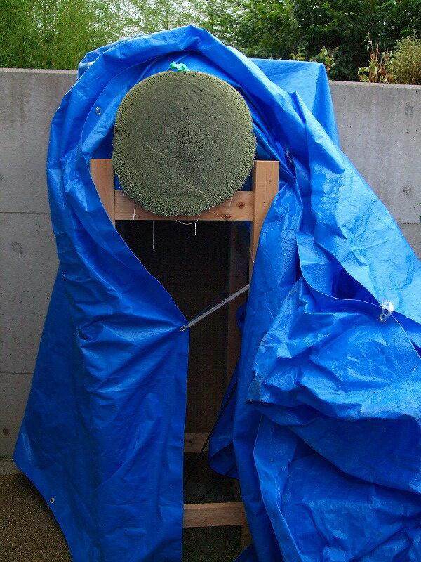 ナイロン製 巻わら サイズ:尺二寸(約36cm)