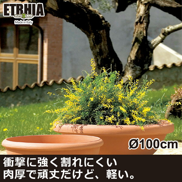 ユーロスリープラスト エトリア ETRHIA ジオッタス100 ER-2143 送料無料