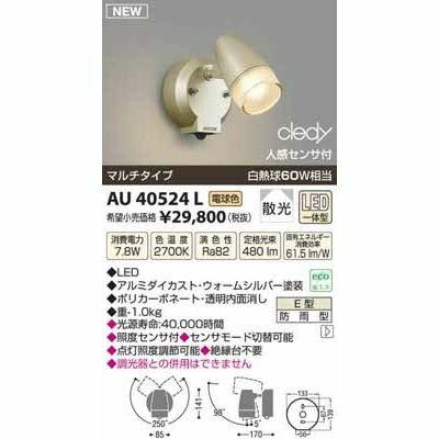 【カード決済OK】コイズミ LEDアウトドアスポット AU40524L