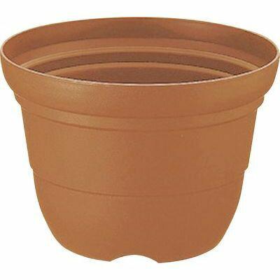 リッチェル カラーバリエ 輪鉢 8号 ブラウン (プラスチック製 植木鉢 プラ鉢)【40個セット】 4973655701843【納期目安:1週間】