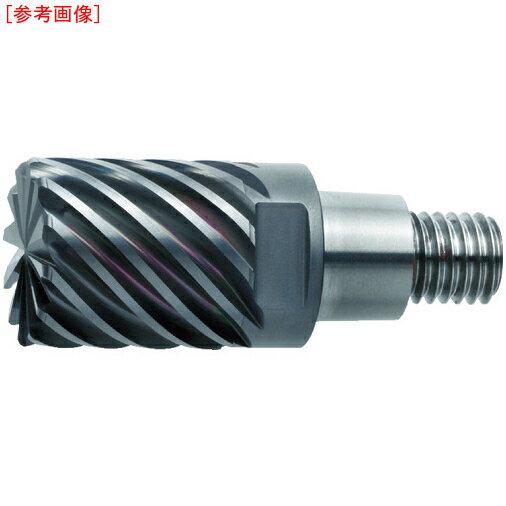 【カード決済OK】三菱マテリアル 三菱 先端交換式EMヘッド(VQ) IMX25C12HV250R10026