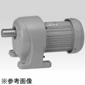 ニッセイ ギアモータ G3シリーズ 脚取付 ブレーキ付  三相 200/220V G3LB-18-30-T010 G3LB-1830T010