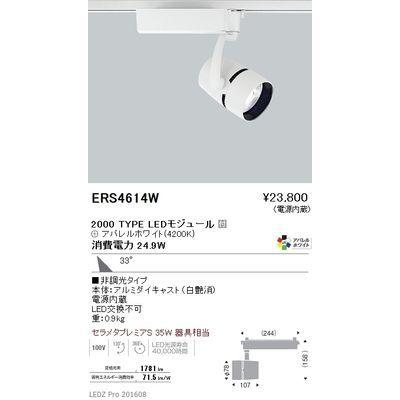 品質満点 遠藤照明 LEDZ ARCHI series スポットライト ERS4614W