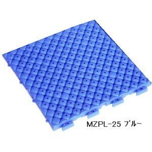 その他 水廻りフロアー プールクッション MZPL-25 64枚セット 色 ブルー サイズ 厚15mm×タテ250mm×ヨコ250mm/枚 64枚セット寸法(2000mm×2000mm) 【日本製】 【防炎】 ds-1284480