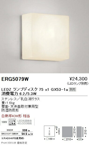 ERG5079W 遠藤照明 施設照明 LEDアウトドアブラケット STYLISH LEDZシリーズ 本体のみ 白熱球30W相当 DISK75 非調光