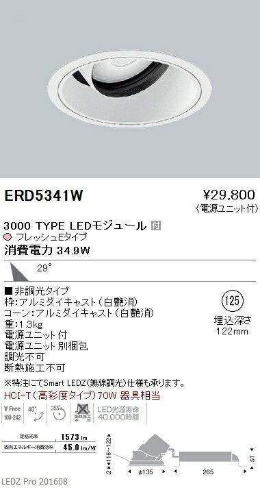 遠藤照明 施設照明生鮮食品用照明 LEDダウンライトARCHIシリーズ 3000タイプ HCI-T(高彩度タイプ)70W相当29° 非調光 フレッシュEERD5341W